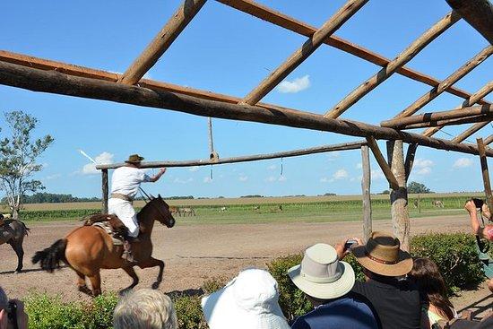 Day Ranch og Fiesta Gaucha i Santa...