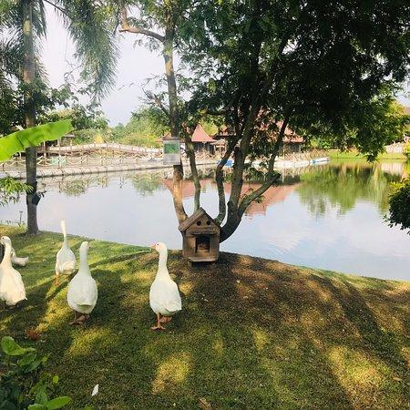 Ban Khai Photo
