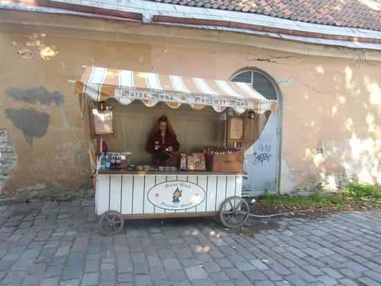 Tallinn, Estonie : Bello Tallin Estonia