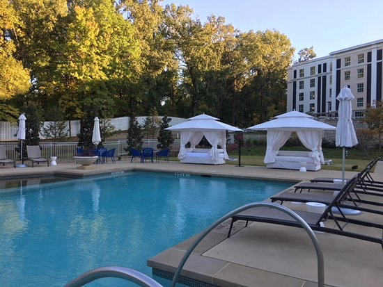 The Guest House at Graceland : pool area in back yard