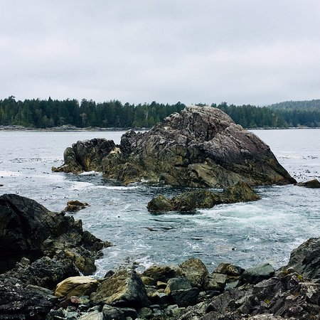 Hot Springs Cove Photo