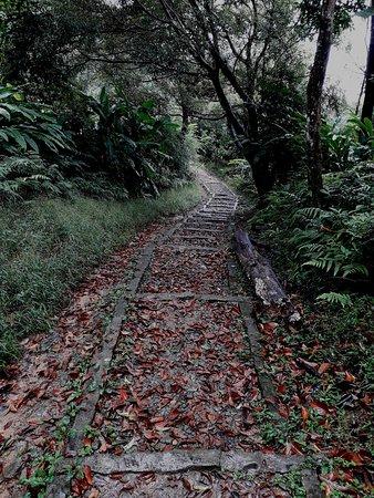 Zhanghu Trail
