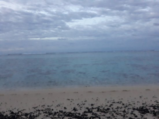 Cooks Bay Villas: clear water for snorkling