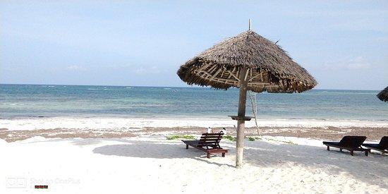 Turtle Bay Beach Club 사진