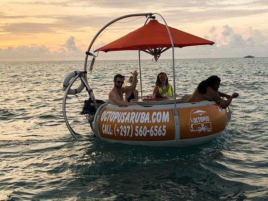 Octopus Sailing Charters : Octopus Aruba Boat Rental Service