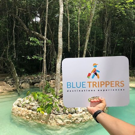 BlueTrippers