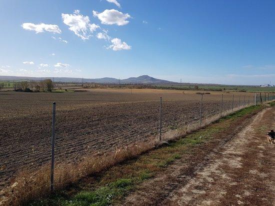 Levandulova Farma