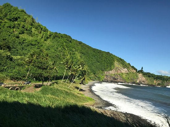 b8f5a0062d Aloha Eco Adventures at the rainbow forest - Picture of Aloha Eco ...