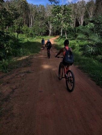 E-Bike Tours and Rental