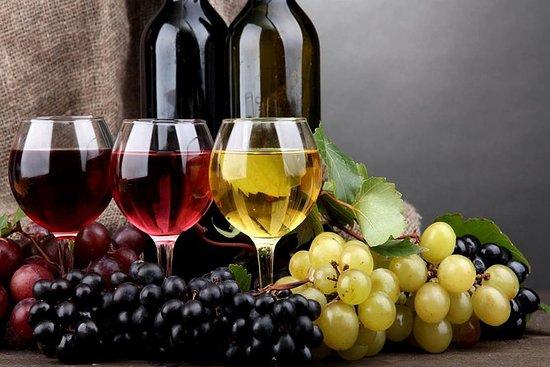 Bekaa Valey Vinprodusenter (hel dag)