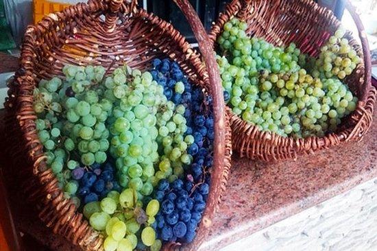 Herzegovina Wine and Food Experience