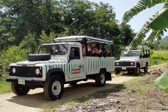 Mystic Island Safari