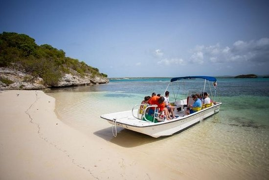 Isla Safari y Stingray City