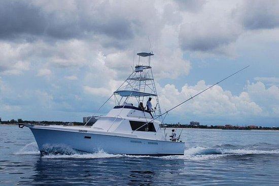 Deep Sea Fishing Half Day