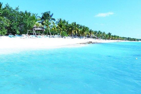 Viagem diurna à Ilha Saona saindo de...