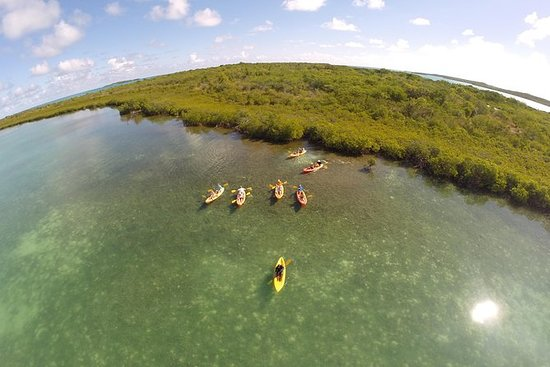 Kayak, Snorkel and Beach