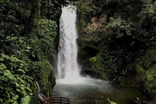 Tamarindo Guanacasteからのラパス滝ガーデンツアー