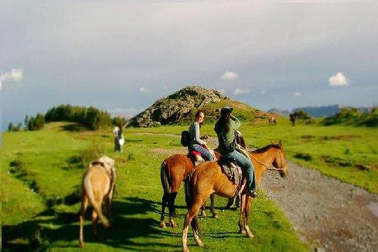 半天马匹从库斯科到印加遗址