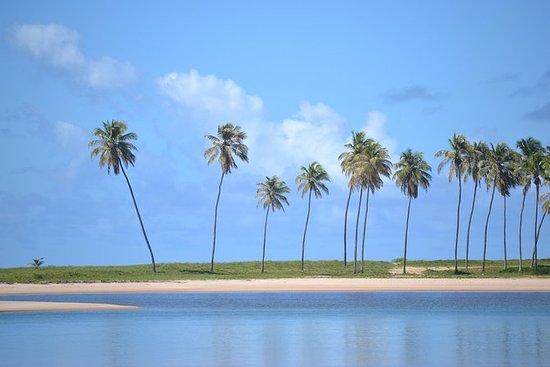从萨尔瓦多机场到CostadeCamaçari海滩和普拉亚之旅
