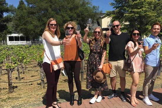 Excursão de degustação de vinhos para...