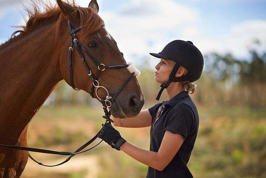 Tour a cavallo di Alanya a Syedra