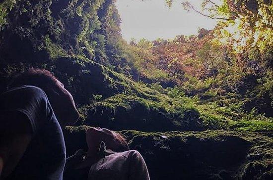 Volcanos & Nature 4x4 Tour (Private...