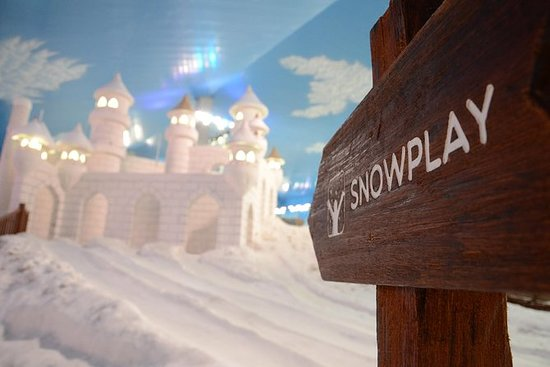 Ingresso geral para Snowland