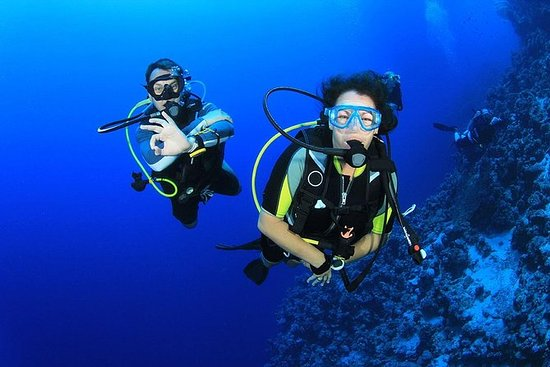 Plongée sous-marine depuis Bodrum