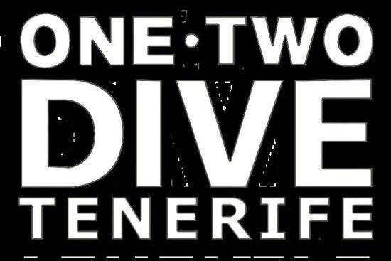 1 PADI Adventure Dive