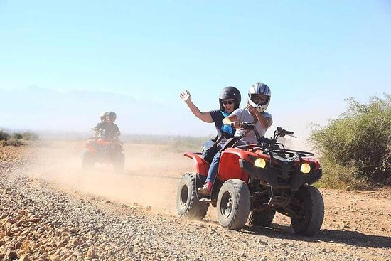 Book a quad biking experience and I will give you a gift camel ride: Marrakech Palmeraie: Camel Ride & Quad Bike Experience
