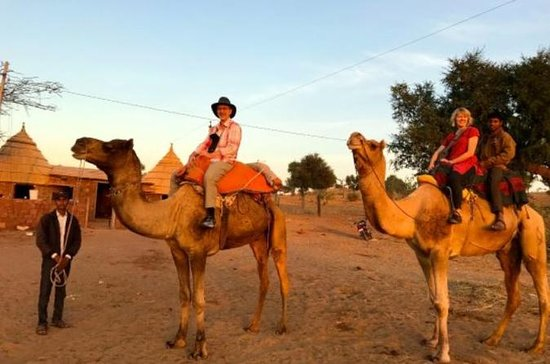 Camel Safari Half -Day Tour In Jodhpur