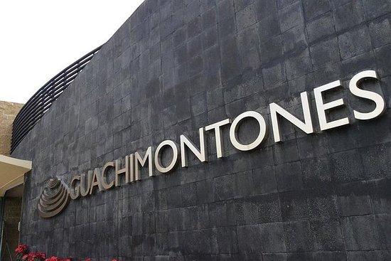 Guachimontonesの考古学的サイトによるツアー