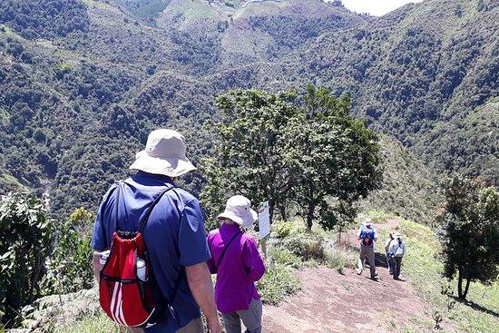 700 mt tirolesa y senderismo en...