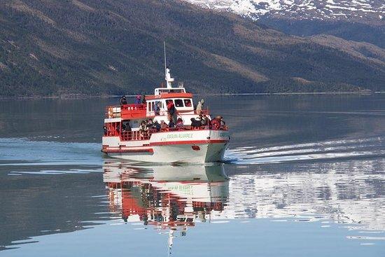 Navigando in Patagonia cilena