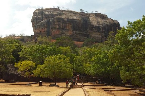 Sigiriya  Dambulla Full-Day Tour From...