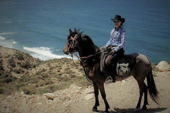 Full Day Horseback Riding in Agadir