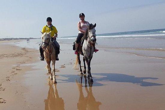 passeio de meio dia a cavalo em Agadir
