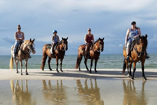 Agadir Equitação