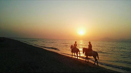 Sunset Horse Ride With Barbecue