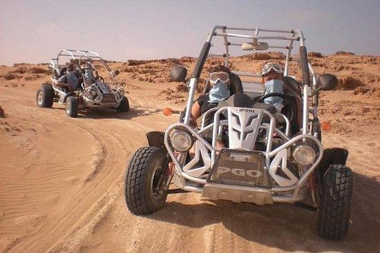 Agadir de buggy denso