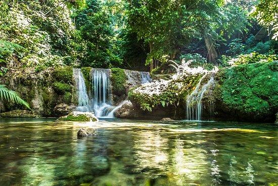 Mele Cascades Waterfall Tour e Black