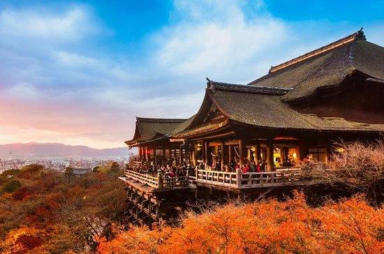 Tour Privado de Kyoto