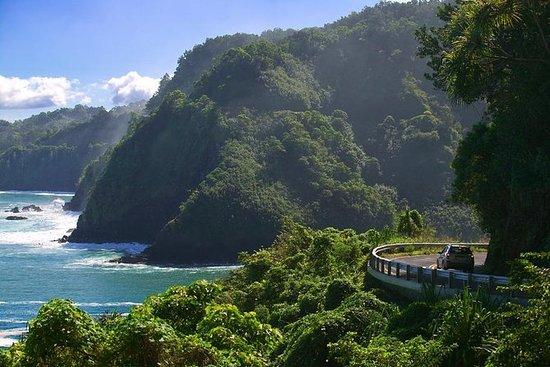 マウイ島:ハナツアー、フルサークル、メルセデスバン、10名まで