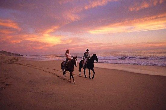 1 horas por do sol passeio a cavalo...