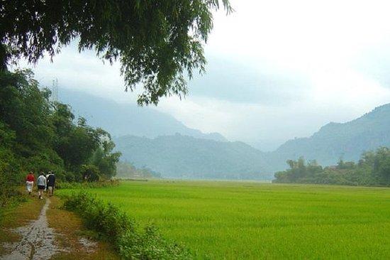 Mai Chau Amazing Full Day depart from...