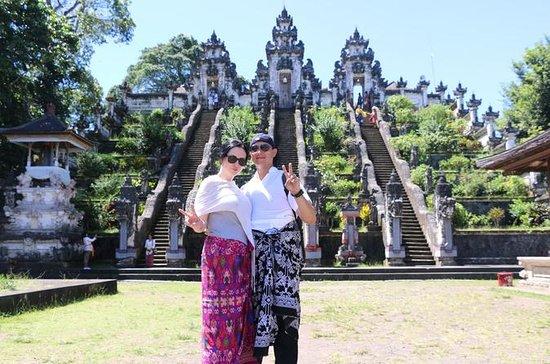 Tour di Bali: Cascata, Tempio di