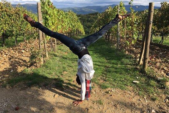 Tour del vino Chianti de 3 bodegas...