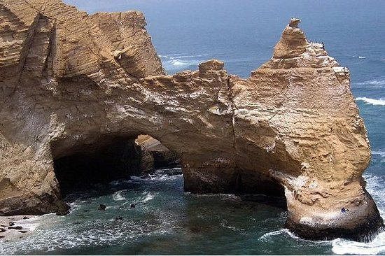 Paracas Ica und Nazca Genießen Natur...
