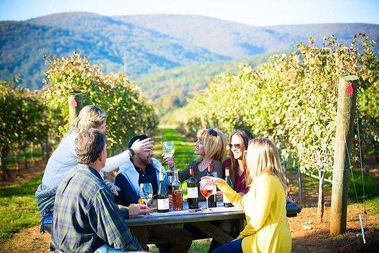 Maipo Valley Wine Tour mit 3...