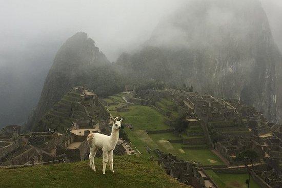 Machu Picchu Full Day Tour Fra Cusco